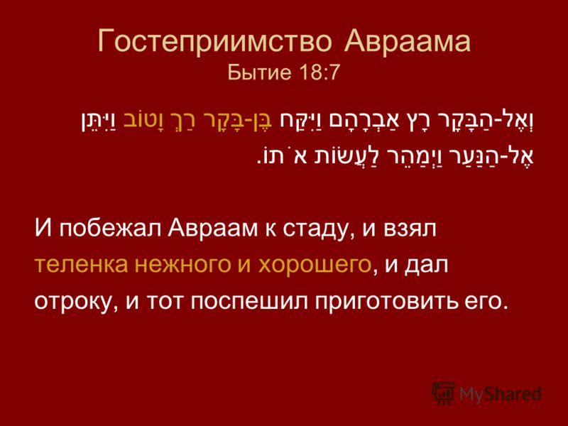 Гостеприимство Авраама Бытие 18:7 וְאֶל-הַבָּקָר רָץ אַבְרָהָם וַיִּקַּח בֶּן-בָּקָר רַךְ וָטוֹב וַיִּתֵּן אֶל-הַנַּעַר וַיְמַהֵר לַעֲשׂוֹת אֹתוֹ. И побежал Авраам к стаду, и взял теленка нежного и хорошего, и дал отроку, и тот поспешил приготовить е