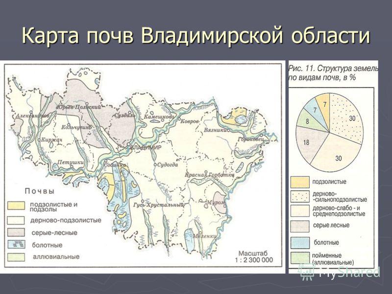 Карта почв Владимирской области