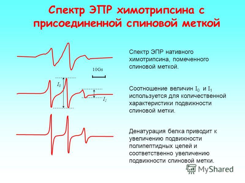 pK pH 0 4 5 6 14 15 16 1 0.5 aN f a N =(a N R + a N RH + )/2 Зависимость параметра f и a N от рН f =(I R ) / (I R + I RH+ ) a N R и a N RH + константы СТВ радикалов R и RH+ I R и I RH+ амплитуды сигналов ЭПРрадикалов R и RH+