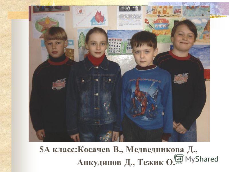 5А класс:Косачев В., Медведникова Д., Анкудинов Д., Тежик О.