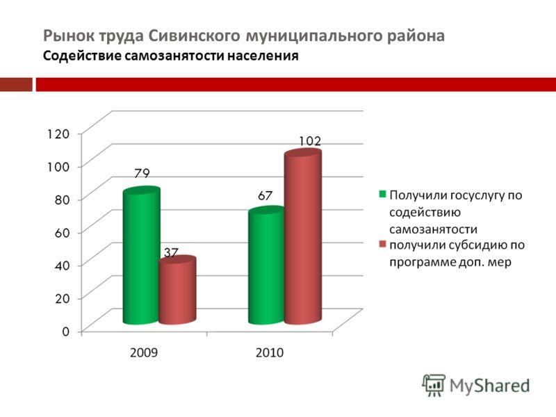 Рынок труда Сивинского муниципального района Содействие самозанятости населения