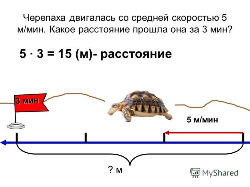 Черепаха двигалась со средней скоростью 5 м/мин. Какое расстояние прошла она за 3 мин? 5 3 = 15 (м)- расстояние 5 м/мин 3 мин ? м