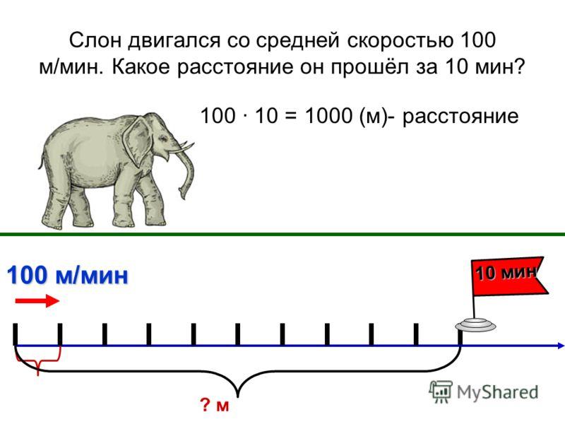 Слон двигался со средней скоростью 100 м/мин. Какое расстояние он прошёл за 10 мин? 100 10 = 1000 (м)- расстояние 10 мин 100 м/мин ? м