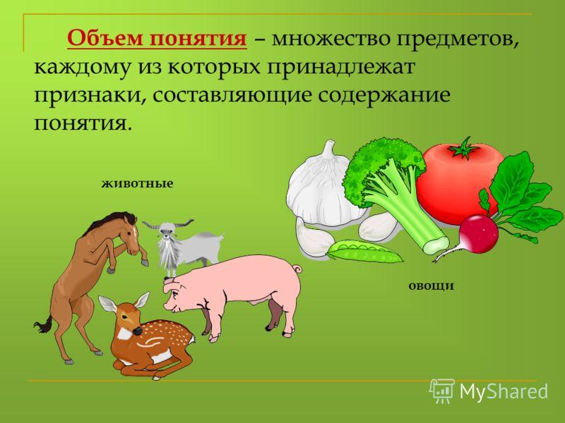 Объем понятия – множество предметов, каждому из которых принадлежат признаки, составляющие содержание понятия. овощи животные