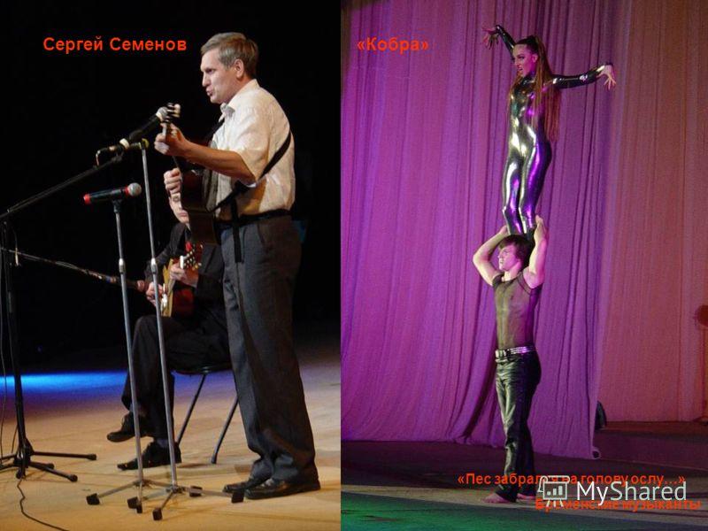 «Пес забрался на голову ослу…» Бременские музыканты «Кобра»Сергей Семенов
