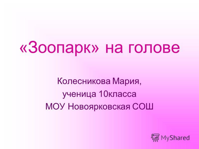 «Зоопарк» на голове Колесникова Мария, ученица 10класса МОУ Новоярковская СОШ