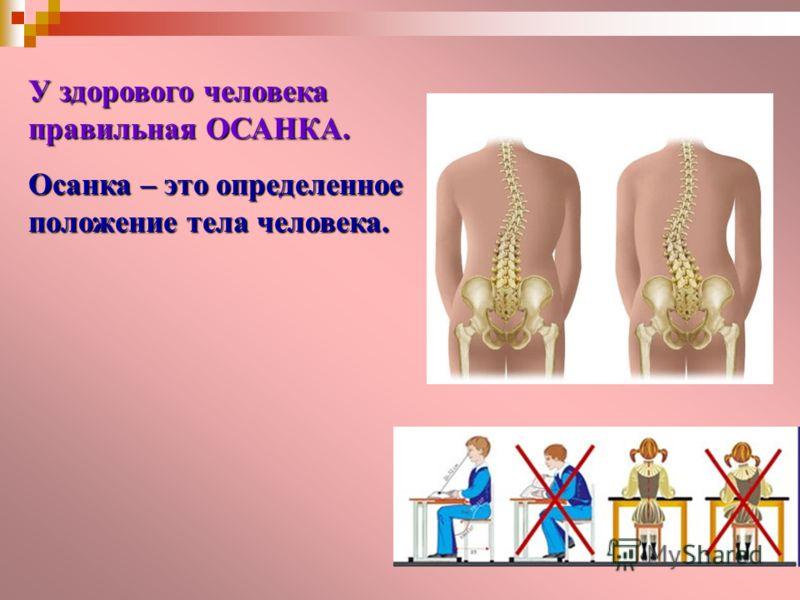 У здорового человека правильная ОСАНКА. Осанка – это определенное положение тела человека.