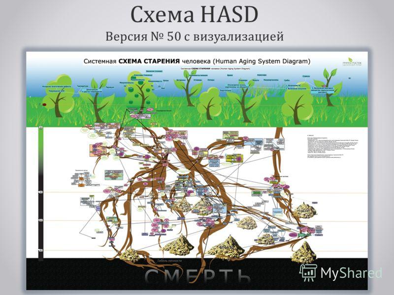 Схема HASD Версия 50 с визуализацией
