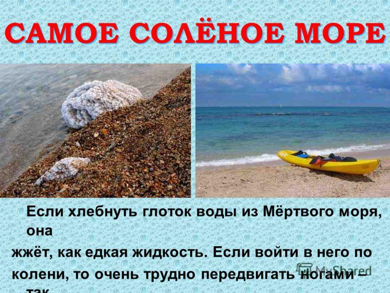 САМОЕ СОЛЁНОЕ МОРЕ САМОЕ СОЛЁНОЕ МОРЕ Если хлебнуть глоток воды из Мёртвого моря, она жжёт, как едкая жидкость. Если войти в него по колени, то очень трудно передвигать ногами – так тяжела его вода.