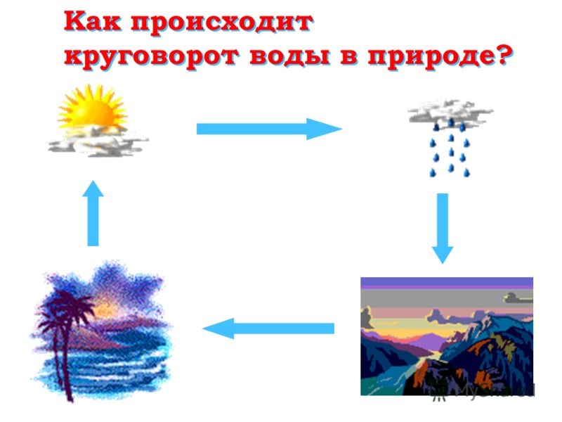 Как происходит круговорот воды в природе? Как происходит круговорот воды в природе?
