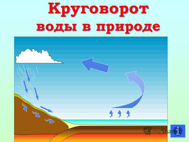 Круговорот воды в природе Круговорот воды в природе