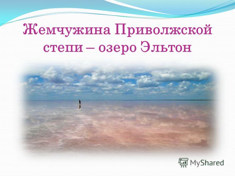 Жемчужина Приволжской степи – озеро Эльтон