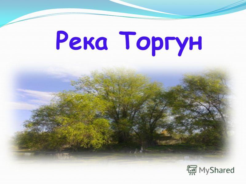 Река Торгун