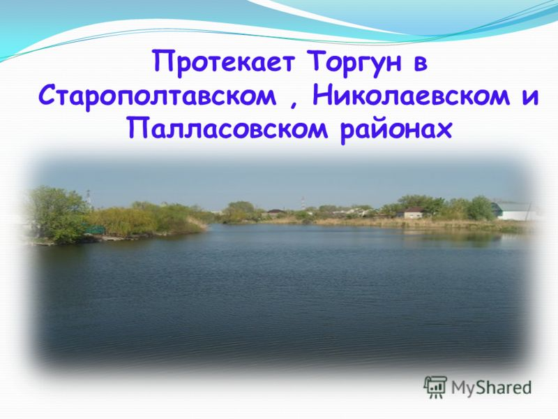 Протекает Торгун в Старополтавском, Николаевском и Палласовском районах