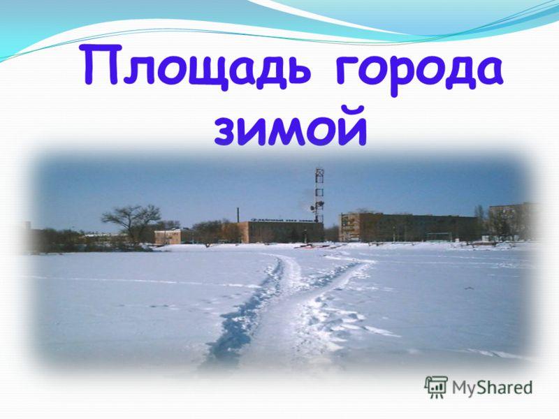 Площадь города зимой