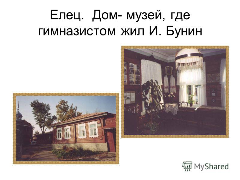 Елец. Дом- музей, где гимназистом жил И. Бунин