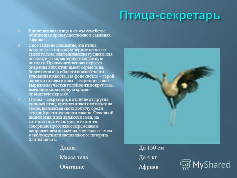 Единственная птица в своем семействе, обитающая преимущественно в саваннах Африки. Свое забавное название, эта птица получила за торчащие черные перья на своей голове, напоминающие гусиные для письма, и за характерную вальяжную походку. Преимуществен