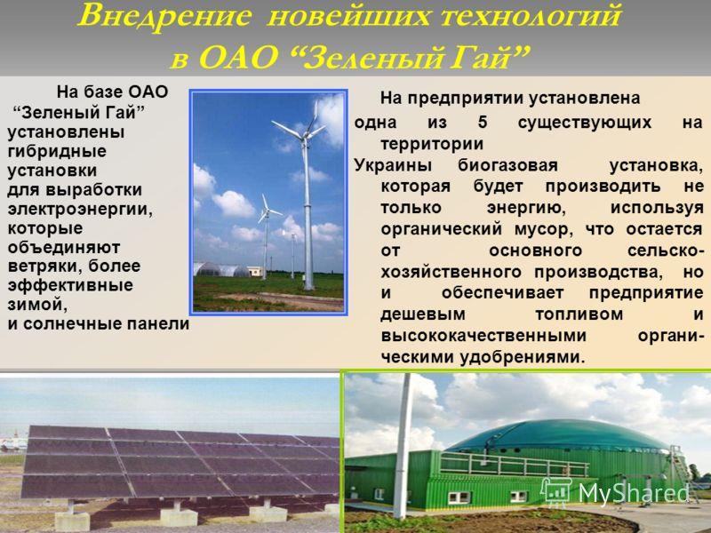 Внедрение новейших технологий в ОАО Зеленый Гай На базе ОАО Зеленый Гай установлены гибридные установки для выработки электроэнергии, которые объединяют ветряки, более эффективные зимой, и солнечные панели На предприятии установлена одна из 5 существ