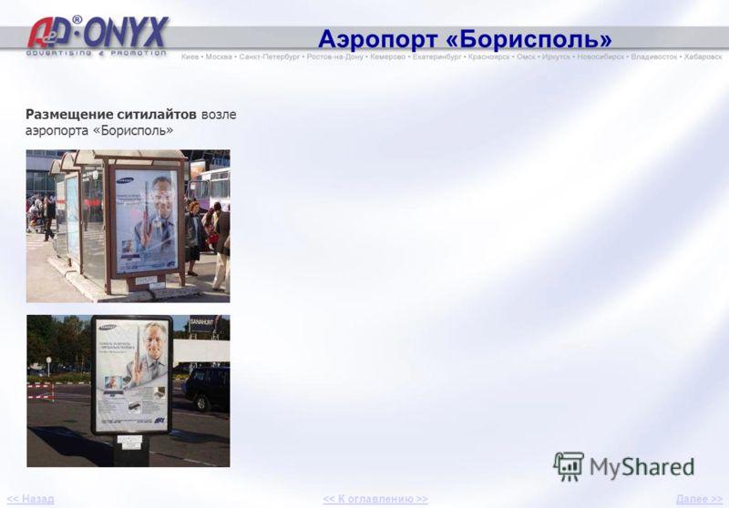 Аэропорт «Борисполь» Размещение ситилайтов возле аэропорта «Борисполь» 3 Далее >>