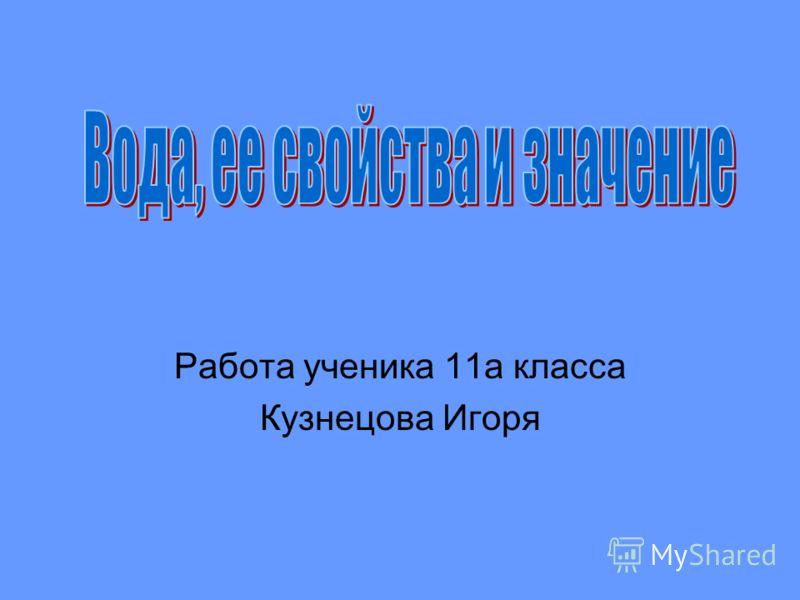 Работа ученика 11а класса Кузнецова Игоря