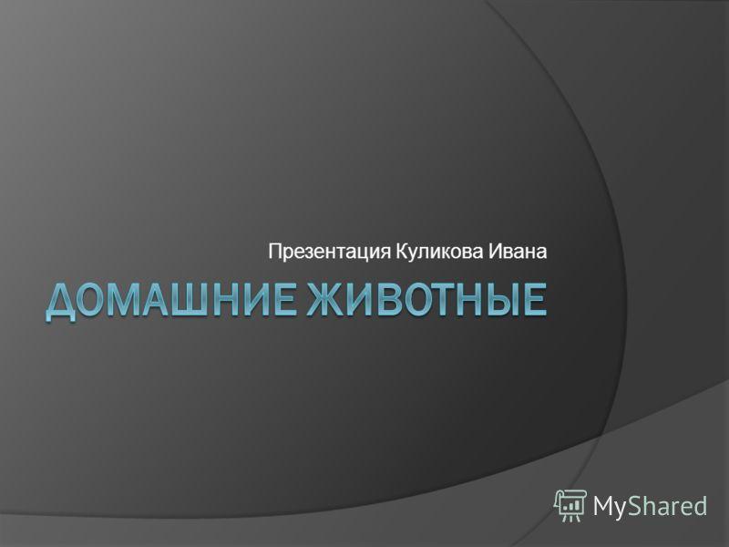 Презентация Куликова Ивана