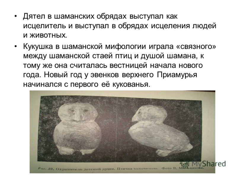 Орёл являлся ведущим персонажем в шаманской мифологии. Это единственная птица, которая способна отогнать враждебных духов от шаманской души. Во всех камланиях он являлся главарём и защитником стаи птиц, несущих душу шамана. Лебеди, как и орлы, являли