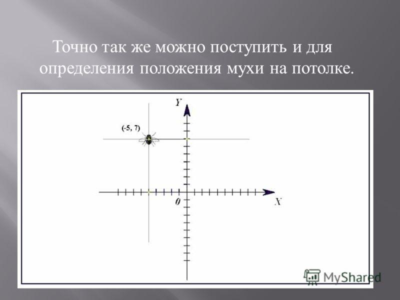Точно так же можно поступить и для определения положения мухи на потолке.