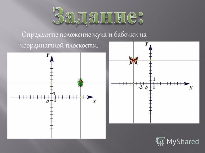 Определите положение жука и бабочки на координатной плоскости. 1 1 -3 1 1
