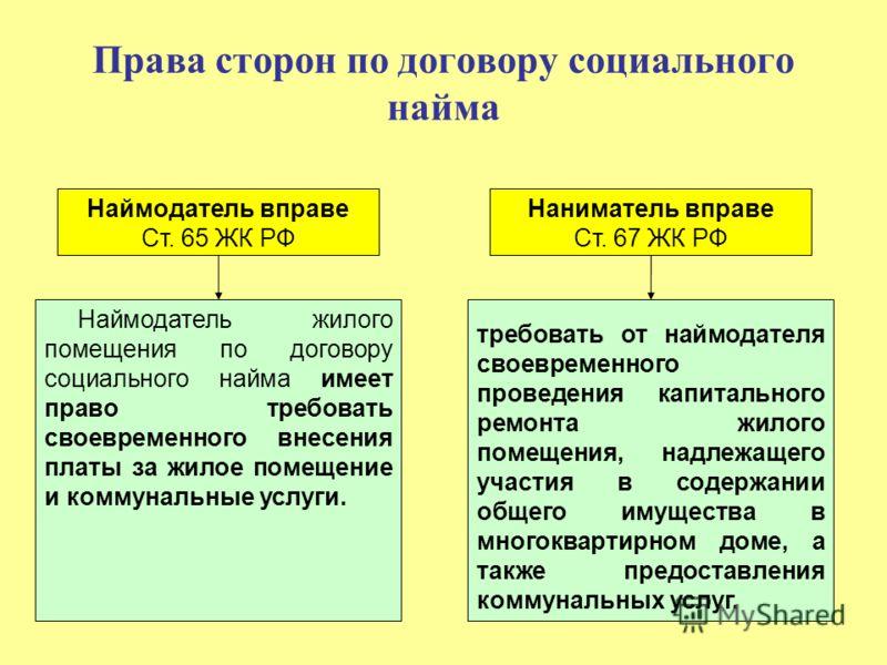 Договор найма жилого помещения калининград