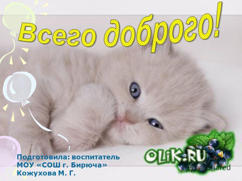 Подготовила: воспитатель МОУ «СОШ г. Бирюча» Кожухова М. Г.