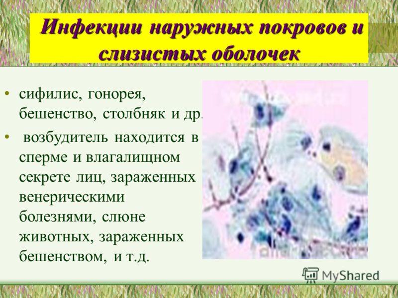 Инфекции наружных покровов и слизистых оболочек Инфекции наружных покровов и слизистых оболочек сифилис, гонорея, бешенство, столбняк и др. возбудител