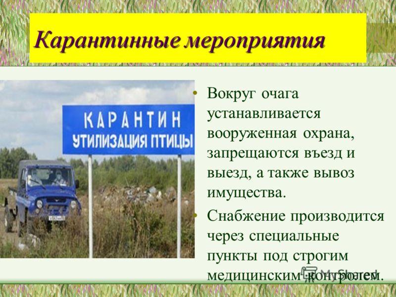 Карантинные мероприятия Вокруг очага устанавливается вооруженная охрана, запрещаются въезд и выезд, а также вывоз имущества. Снабжение производится че