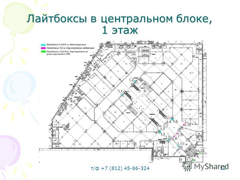 т/ф +7 (812) 45-66-324 12 Лайтбоксы в центральном блоке, 1 этаж