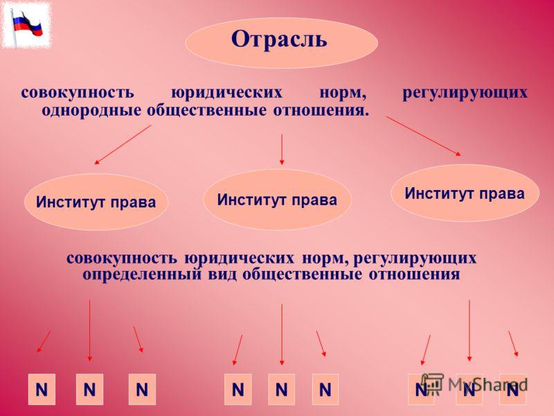 Отрасль Институт права NNNNN N NNN совокупность юридических норм, регулирующих однородные общественные отношения. совокупность юридических норм, регул