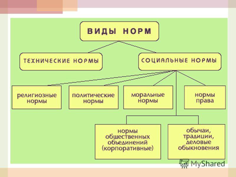3.1. Социальные нормы и их виды.