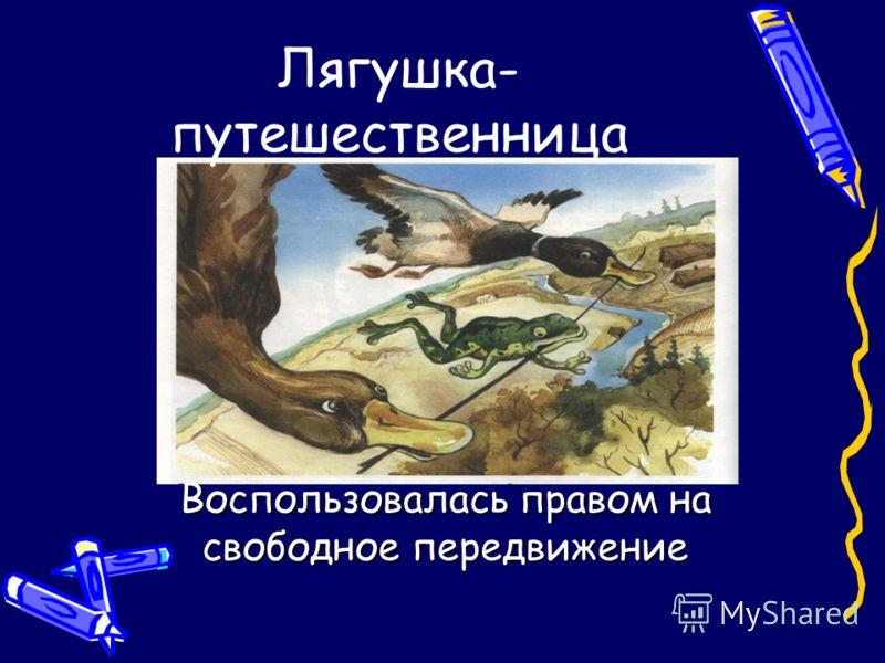 Лягушка- путешественница Воспользовалась правом на свободное передвижение