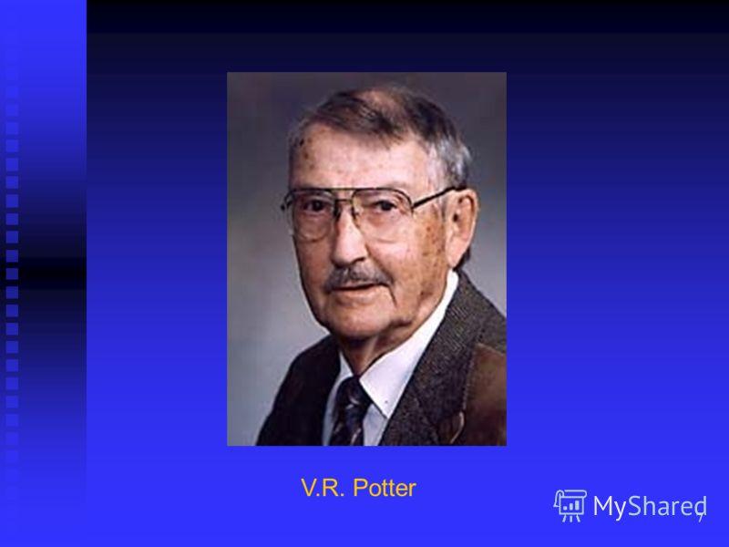 7 V.R. Potter