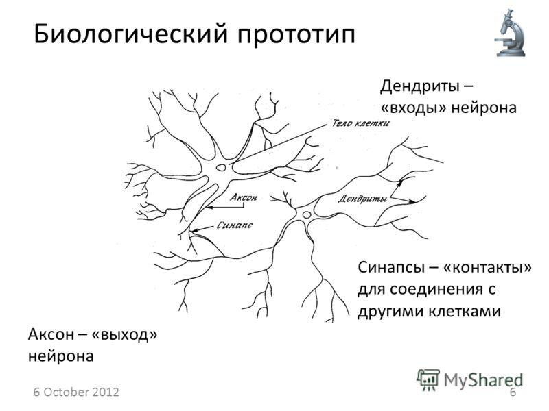 Биологический прототип 14 August 20126 Дендриты – «входы» нейрона Синапсы – «контакты» для соединения с другими клетками Аксон – «выход» нейрона