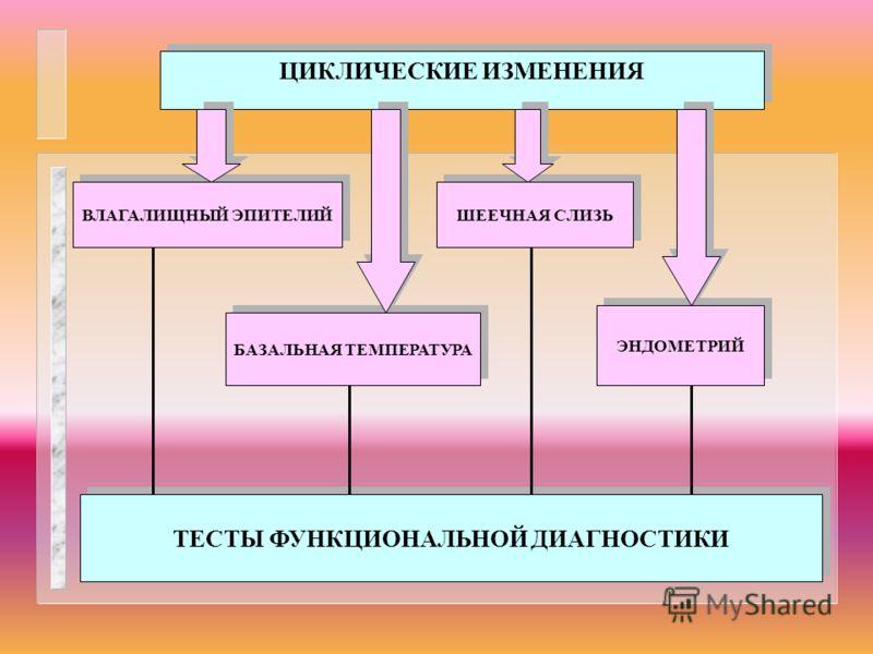 ВЛАГАЛИЩНЫЙ ЭПИТЕЛИЙ БАЗАЛЬНАЯ ТЕМПЕРАТУРА ШЕЕЧНАЯ СЛИЗЬ ЭНДОМЕТРИЙ ЦИКЛИЧЕСКИЕ ИЗМЕНЕНИЯ ТЕСТЫ ФУНКЦИОНАЛЬНОЙ ДИАГНОСТИКИ