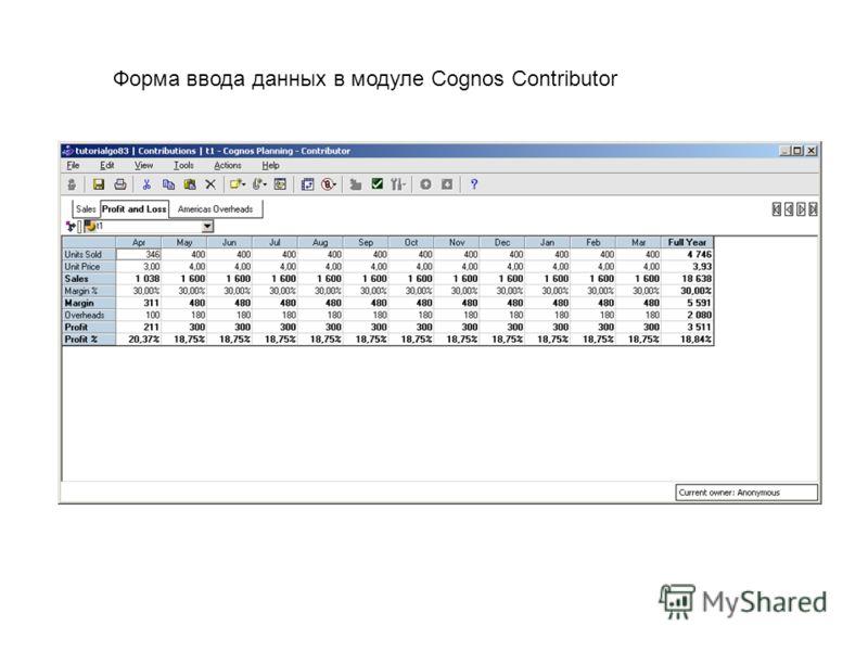 Форма ввода данных в модуле Cognos Contributor