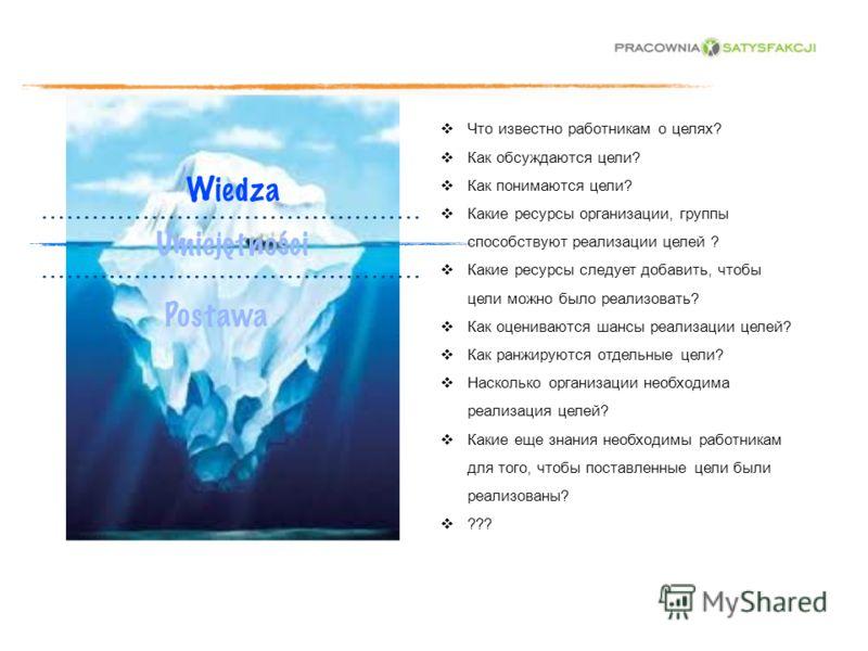 Что известно работникам о целях? Как обсуждаются цели? Как понимаются цели? Какие ресурсы организации, группы способствуют реализации целей ? Какие ресурсы следует добавить, чтобы цели можно было реализовать? Как оцениваются шансы реализации целей? К