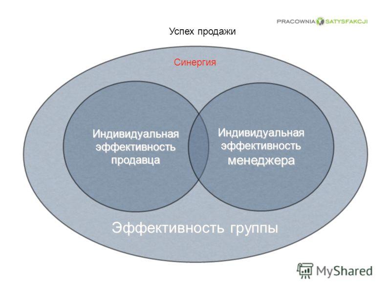 Эффективность группы Успех продажи Индивидуальная эффективность продавца Индивидуальная эффективность менеджера Синергия