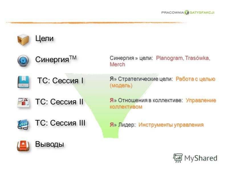 Цели Синергия TM TC: Сессия I TC: Сессия II TC: Сессия III Выводы Я» Стратегические цели: Работа с целью (модель) Я» Отношения в коллективе: Управление коллективом Я » Лидер: Инструменты управления Синергия » цели: Planogram, Trasówka, Merch