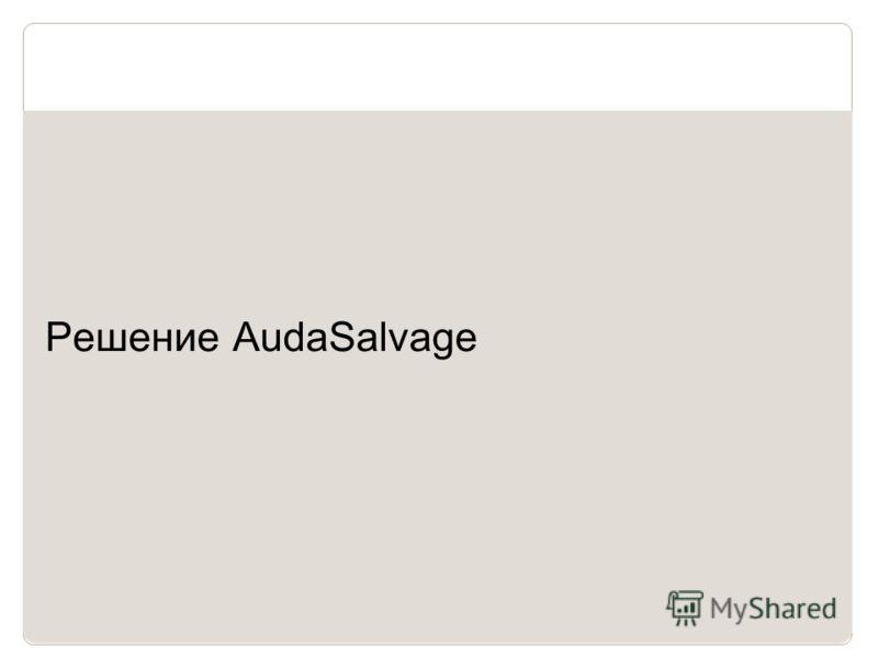 10 Решение AudaSalvage