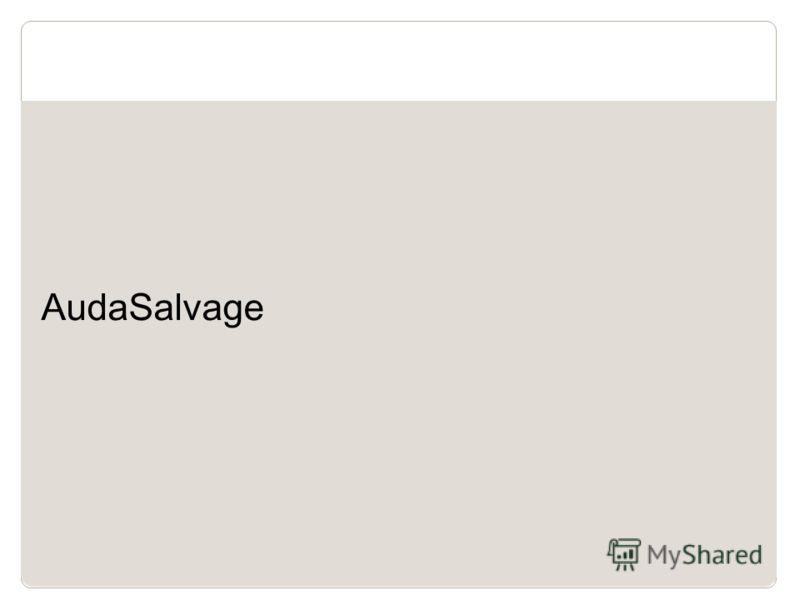 6 AudaSalvage