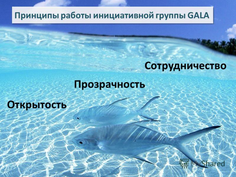 Принципы работы инициативной группы GALA Открытость Прозрачность Сотрудничество