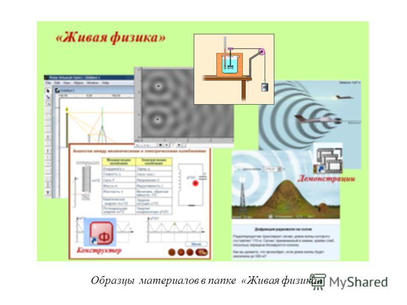Образцы материалов в папке «Живая физика»