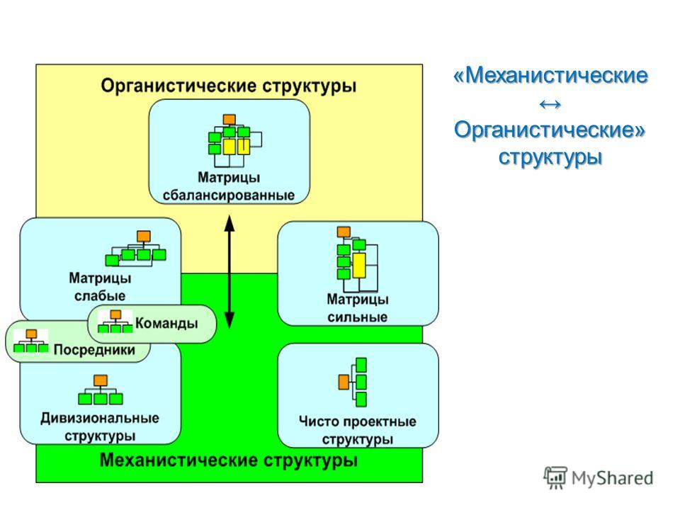 «Механистические Органистические» структуры