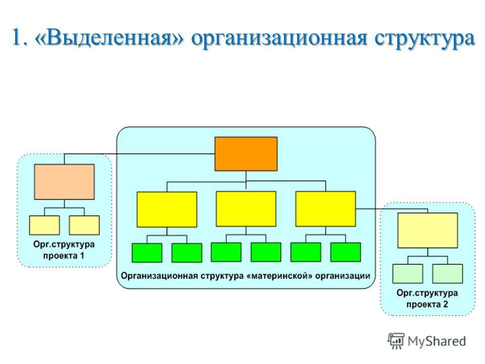 1. «Выделенная» организационная структура