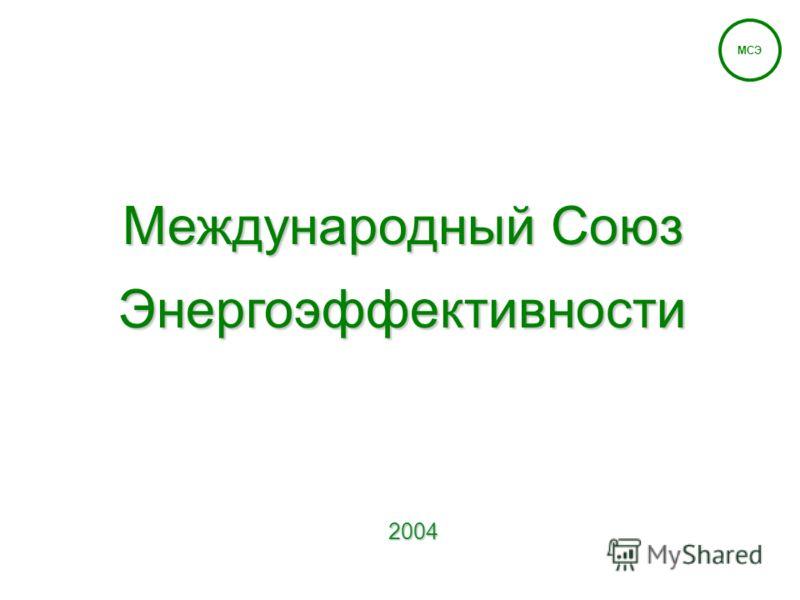 2004 Международный Союз Энергоэффективности МСЭ